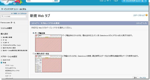 新規 Web タブ ~ Salesforce - Developer Edition_0